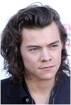 men's hair style for long hair system